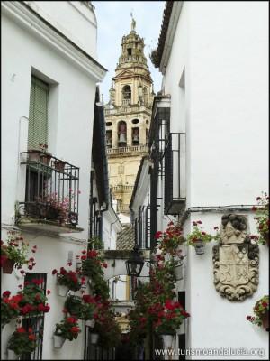 Calleja las Flores Córdoba