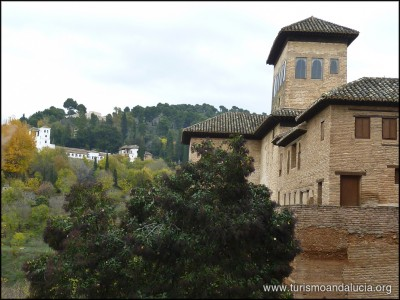 Generalife desde la Alhambra