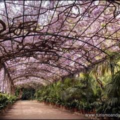El Jardín de La Concepción. Un trozo del paraiso en el paraiso.