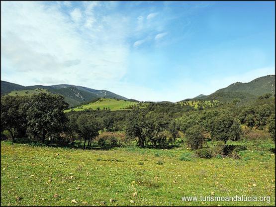 Paisaje de Sierra Morena