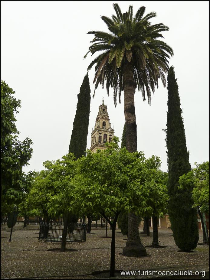 Torre Catedral Mezquita Córdoba