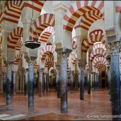 La Mezquita de Córdoba. El Bosque de Columnas.